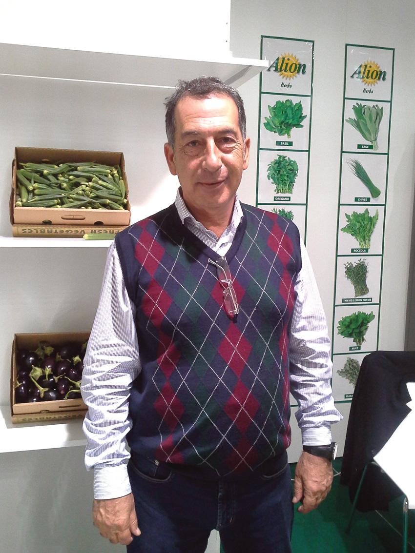 CONV cyprus ALION vegetables (5) angelika
