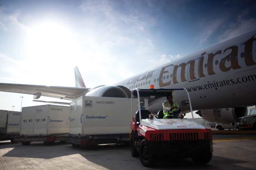 SPECIAL middleeast EMIRATES AIRLINES Skycargo-ULD-1_0155