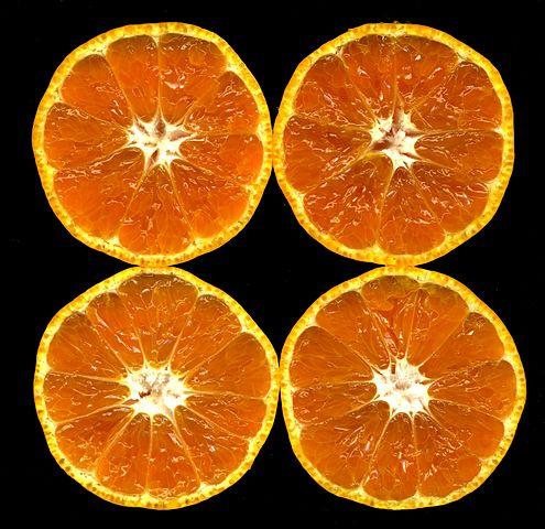 495px-Citrus_unshiu-unshu_mikan