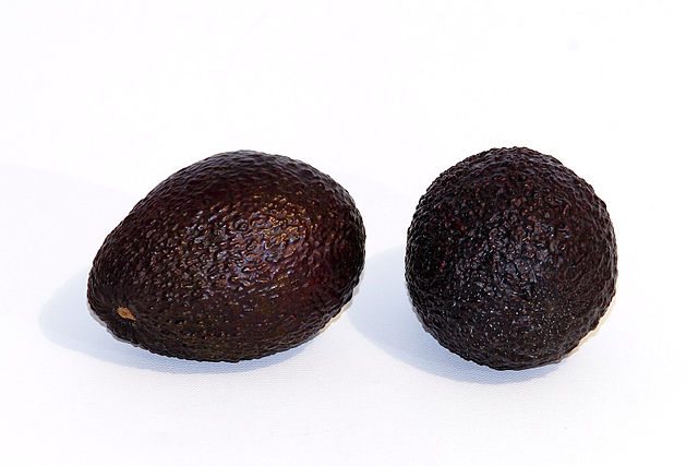 640px-Hass_avocado_-white_background