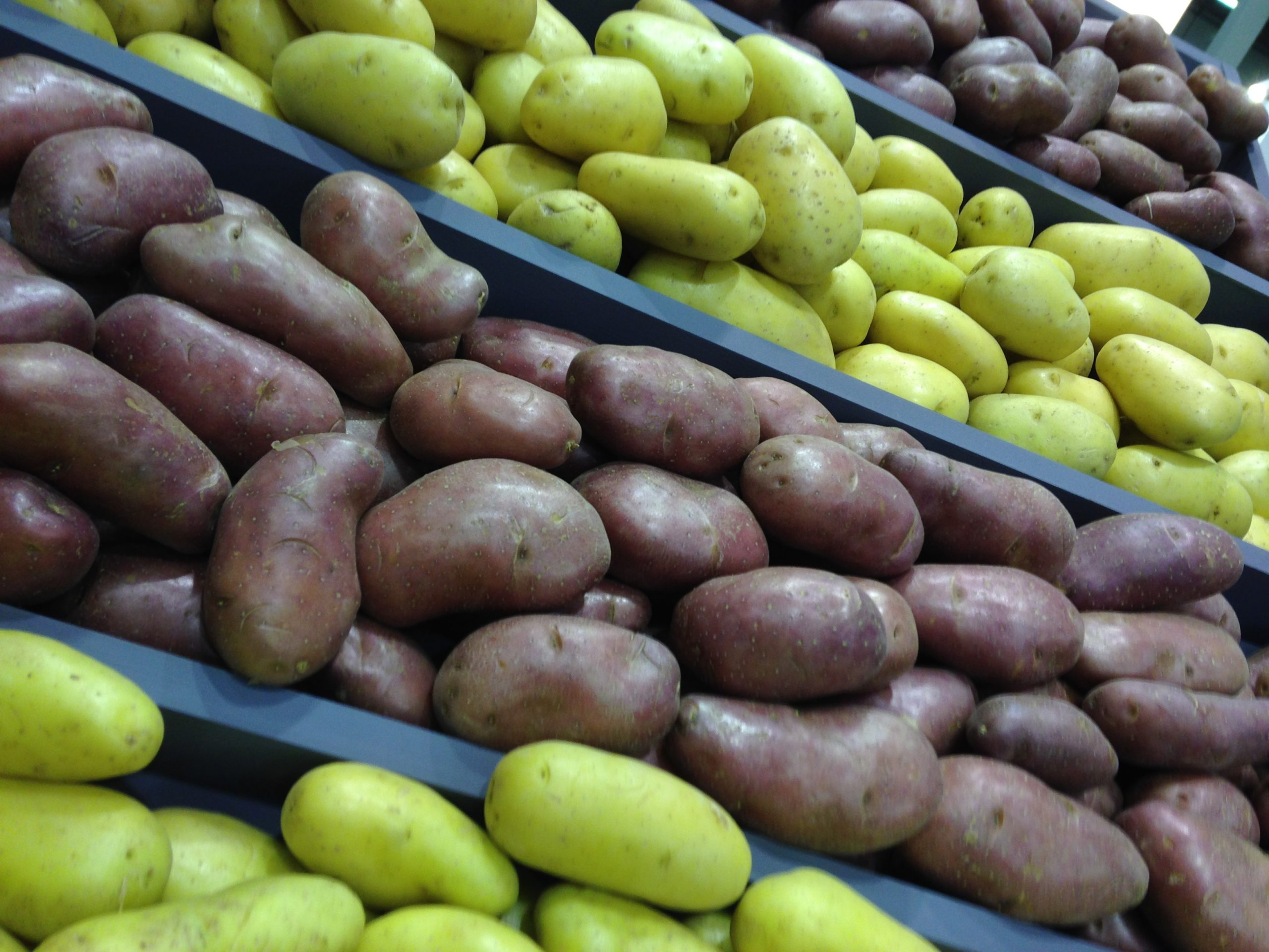China's bid to make potatoes the country's fourth most important staple crop – after rice, wheat and corn – is motivated by food security and sustainability concerns, explains Euromonitor International.