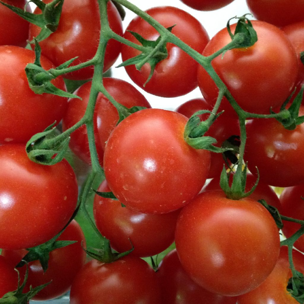 Spanish tomato growers have stressed the importance of separate minimum entry prices for round and cherry tomatoes entering the EU market.