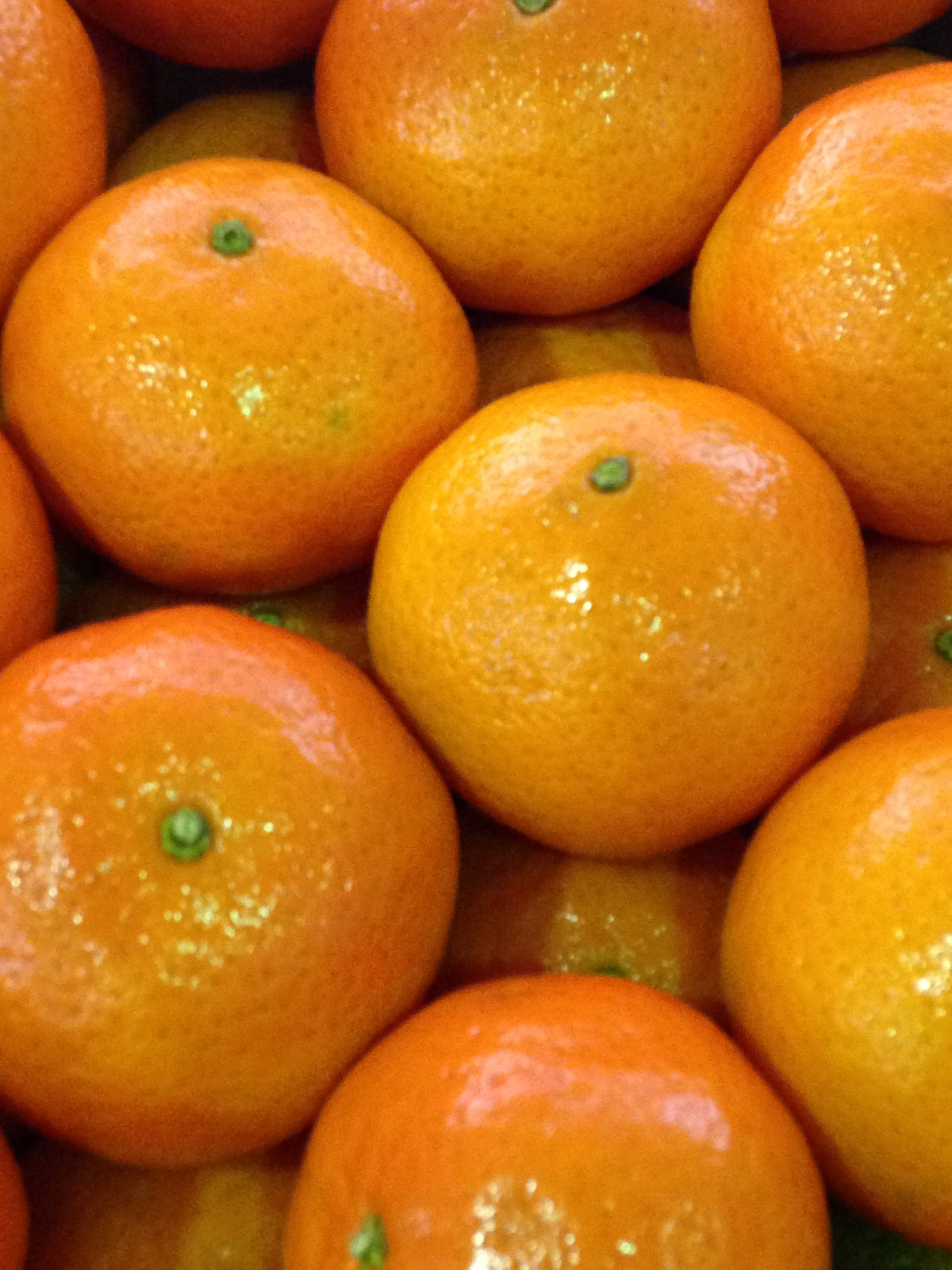 Citrus fruit from the entire country of Peru could be imported into the continental United States under a change proposed by the U.S. Department of Agriculture's Animal and Plant Health Inspection Services (APHIS).