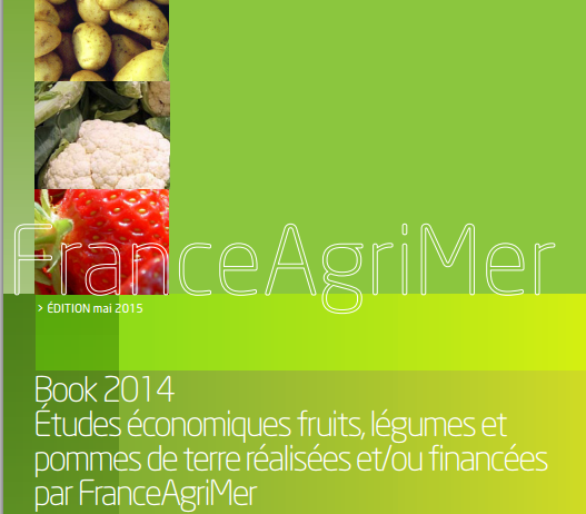 A recent report by the French ministry for agriculture, FranceAgriMer, assesses export competitivesness in key markets for the six key produce categories of cauliflower, tomatoes, salad, strawberries, peaches and nectarines, and apples