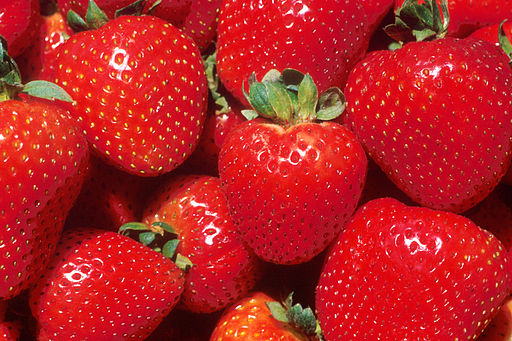 Spain's strawberry capital, Huelva, has bounced back from last year's poor results with a nearly 21% boost in turnover – to €355 million – in its latest season.
