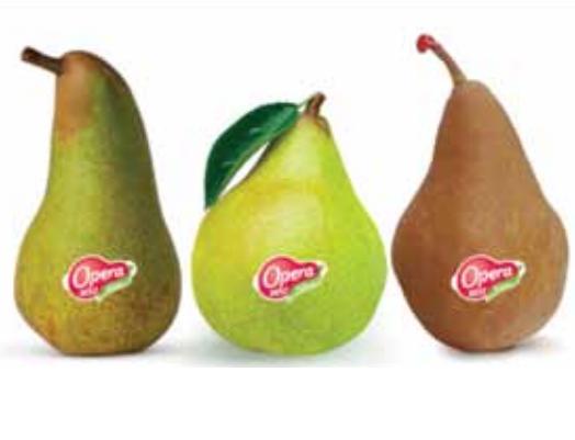 Opera pear