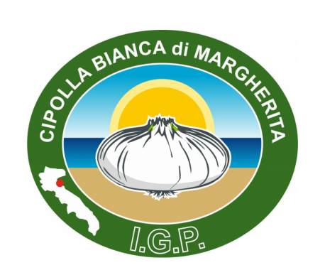 Italy's 'Cipolla Bianca di Margherita' – a sweet, white onion produced along the Adriatic coast – was registered in the EU as a Protected Geographical Indication (PGI) on October 20.