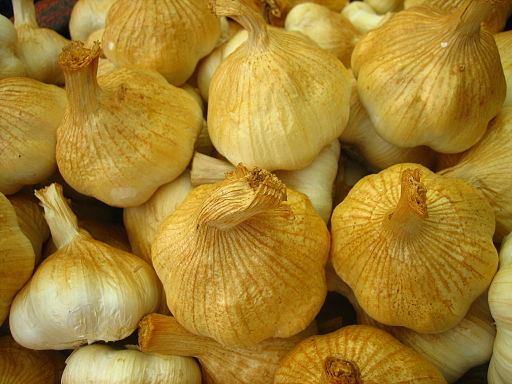 The US has argued that smoked garlic is a processed commodity and should not be included in the fresh garlic standard being developed within the framework of the Codex Committee on Processed Fruits and Vegetables (CCPFV).