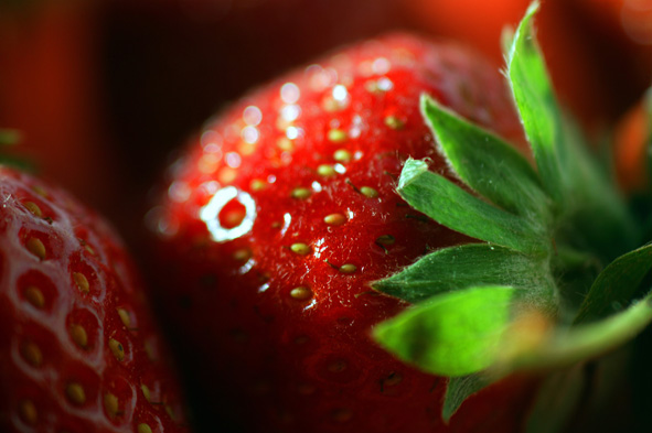International Strawberry Symposium 2020: programme for the IX edition published