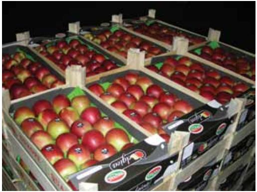 bfv apples