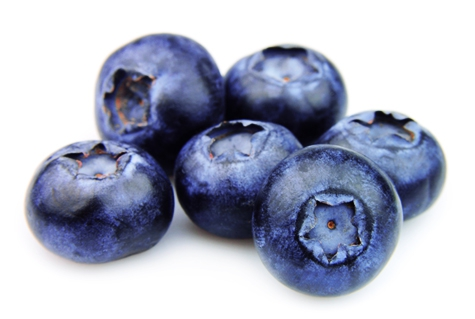Huertos Collipulli plans to add fair trade certification to its organic blueberry operation, aiming to embrace the full concept, including good practices in the fields and packing facilities.