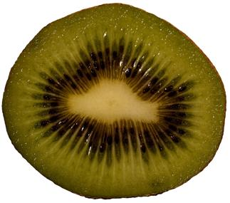 In Chile, the Chilean kiwi committee, alongside a group of experts from the PUC  University, has carried out in-depth research to identify the critical variables so that the outer skin, heart and pulp all ripen evenly.