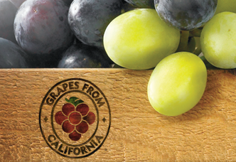 2015 Record Crop Value for California Table Grapes Three Seasons in a Row Over 110 Million Boxes