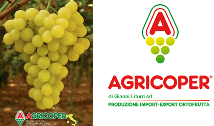 Agricoper is currently focused on expanding its activity to the Middle East and US and steps will be taken in this direction soon.