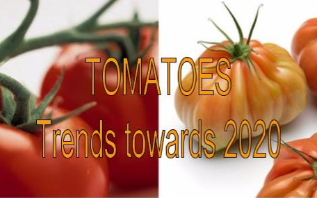 """The """"Tomatoes, trends towards 2020"""" conference aims to create a forum for the exchange of recent scientific knowledge and sales and marketing experiences. Both research and marketing topics will be handled in parallel sessions."""