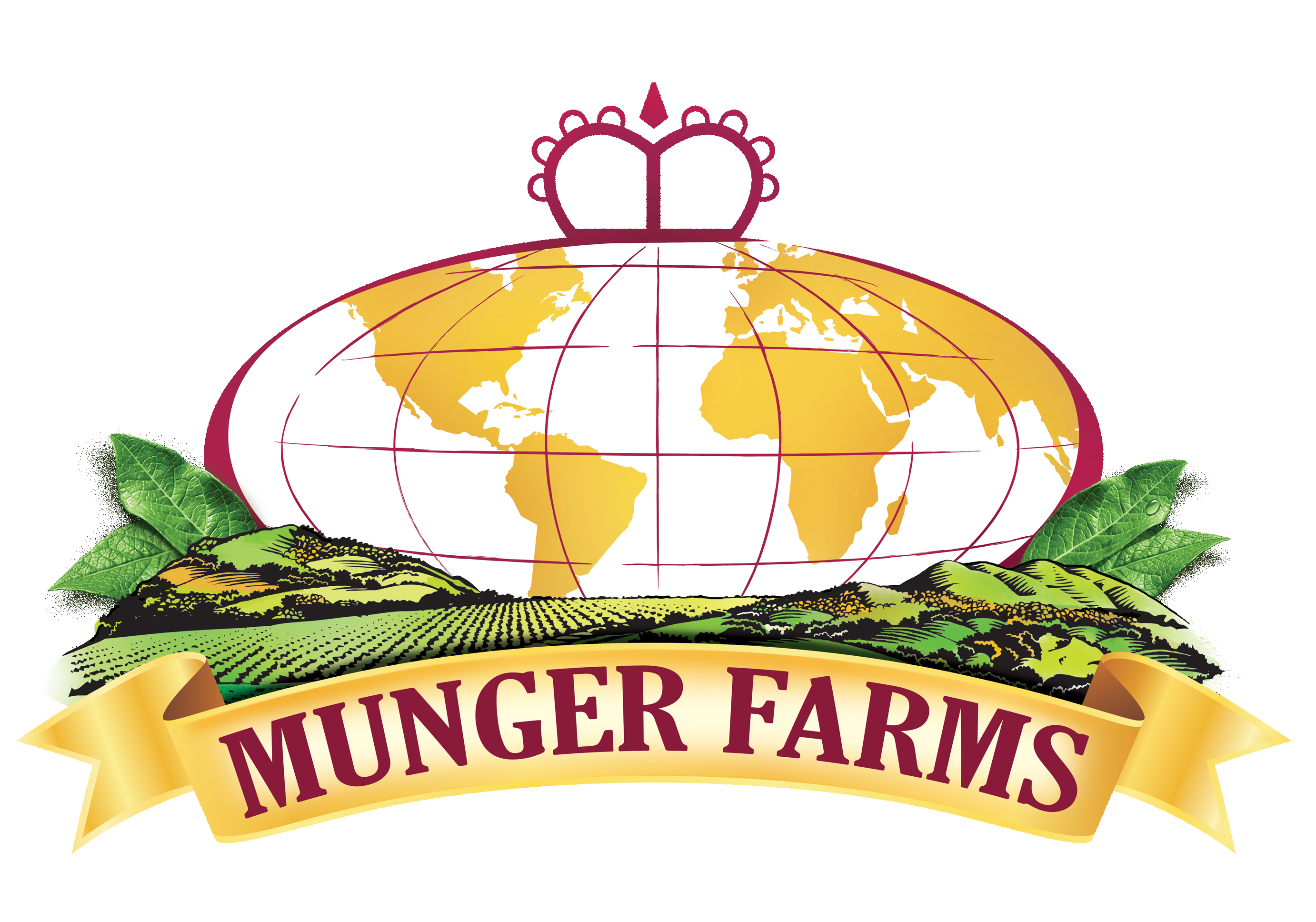To be called Munger-Hortifrut North America, Inc., the new subsidiary of Hortifrut S.A. will manage its North American berry operations