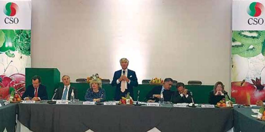 Paolo Bruni has been elected as chairman of the Italian fresh produce agency Centro Servizi Ortofrutticoli (CSO) and Carlo Manzo of Ortofruit Italia and Cesare Bellò of OPO Veneto as vice-chairmen.