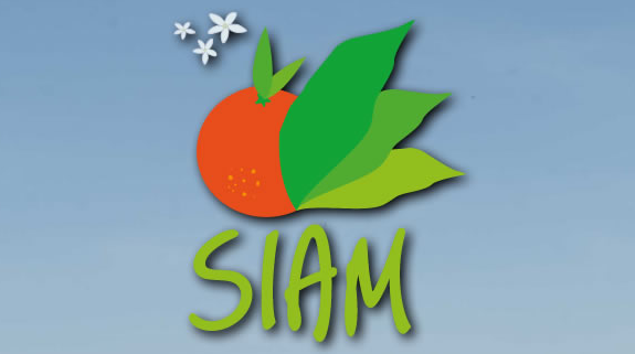 SIAM is a major date on the African continent and has an important place in the agenda of key national and international decision-makers, attracting more exhibitors and visitors every year. Spread over 17 ha and integrating 9 marquees, the 2016 event was particularly special, attracting a record level of visitors – more than 700,000 – as well as 1,200 exhibitors, with 65 different countries represented.