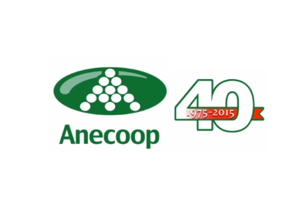 After forty years working to achieve greater profitability for fruit, vegetables and wine, Anecoop is celebrating its anniversary with its partners in every province of Spain where Anecoop has a commercial office: Valencia, Murcia, Almería and Sevilla.