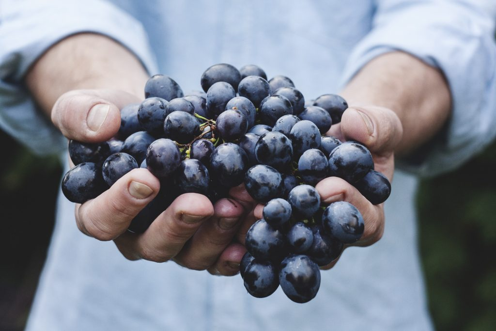 Nielsen figures show that the grape category was worth $2.7 billion in retail sales in the United States in the 52 weeks to May 28 this year, a figure 6.7% higher – equal to  $169.6 million – than that for the same period a year ago.