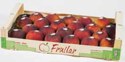 Thanks to its balance between pome fruit and stone fruit, Fruilar has a year-round supply of fruit.