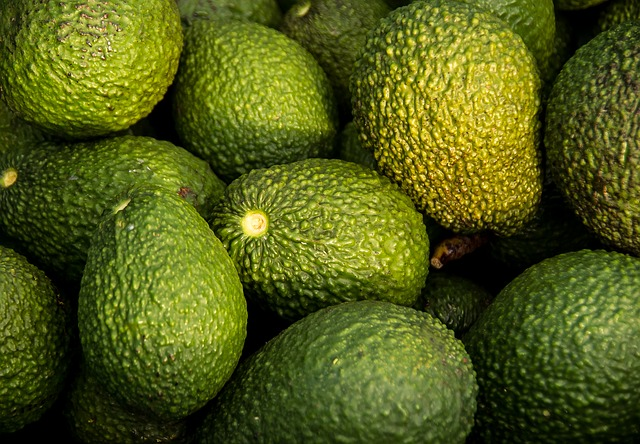 According to SUNAT and the Peruvian Avocado Commission (PAC), last year 27% of Peru's avocado exports went to the US and 65% to the EU. Exports to the US are expected to total about 45,000 tons this year.