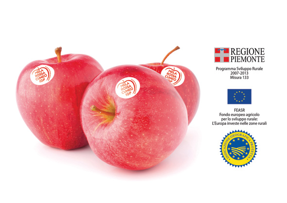 Showcasing one of the most important PGIs in the Italian fruit sector, as well as the terrain that produces it, as the foundation of a sales strategy that looks beyond Italy's borders: this is the policy of Asprofrut – Assortofrutta with regards to Cuneo PGI red apples.