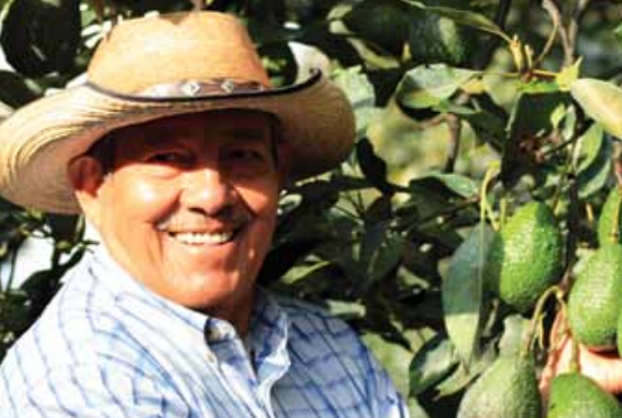 """""""Our mission is to conquer international markets for Mexican avocado, maintaining sustainable development of our fruit through unity, equity and teamwork of all the producers and packer-exporters in the country"""""""