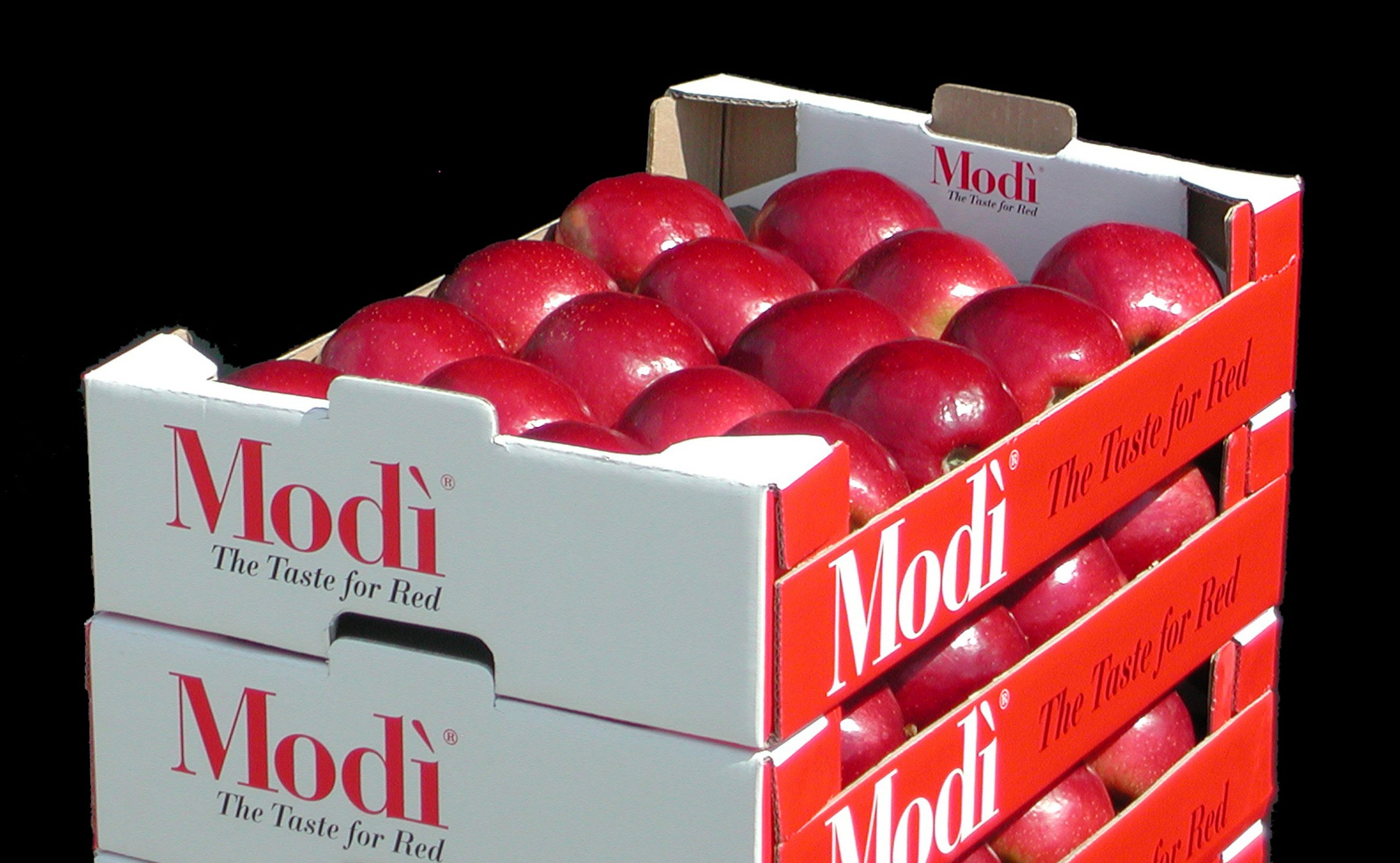 The farming plan aims to reach about 1,000 ha worldwide in the next few years – with roughly 80% located in the Northern Hemisphere – and global production of the variety reaching about 30.000 tons, thus achieving a favourable balance between supply and demand for Modi apples.