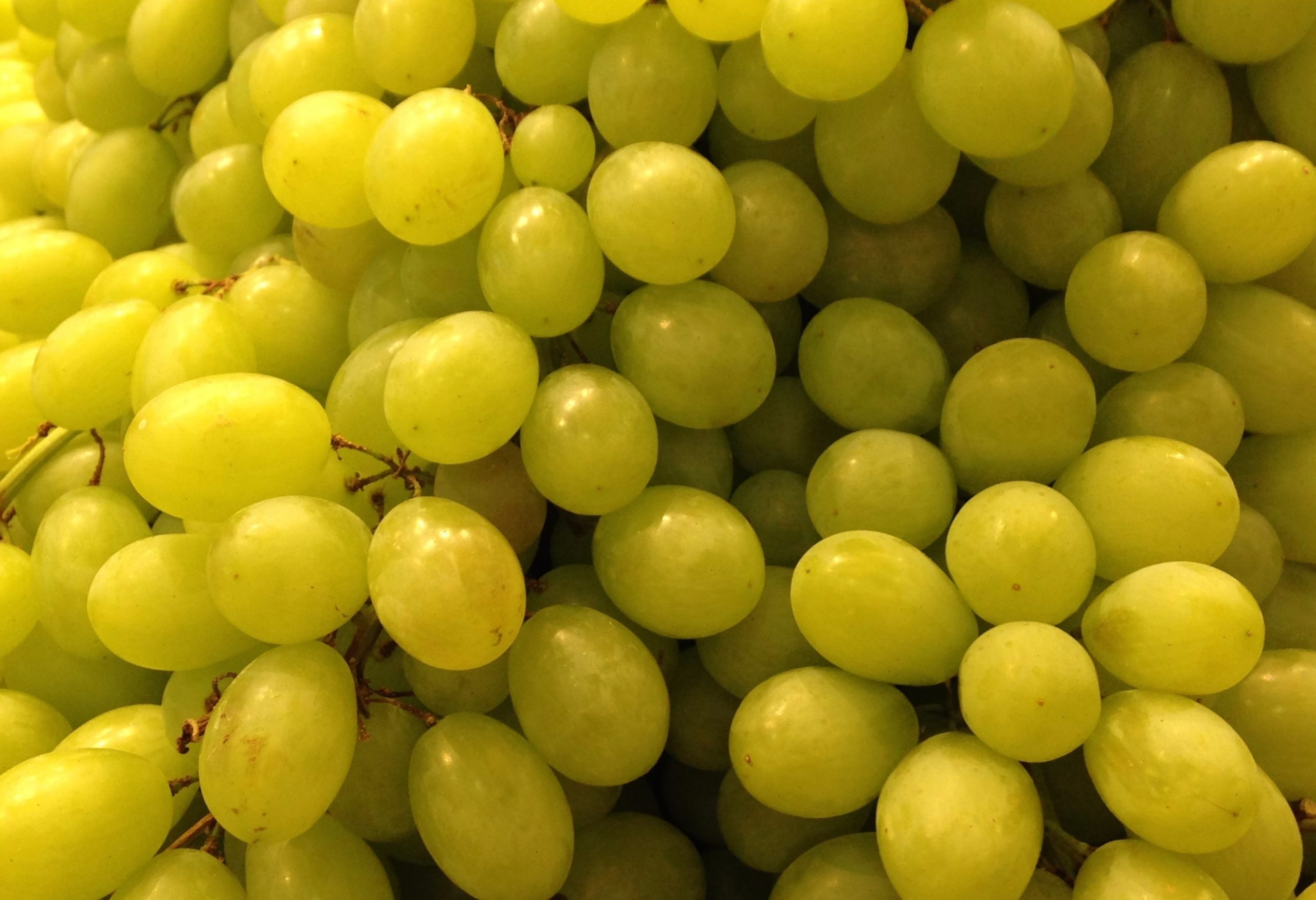 With 700 containers of table grapes exported and 600 units of other varieties, Chand Fruit is the largest fruit and vegetable exporter in India. Its products are also well-known under the 'Golden' brand.