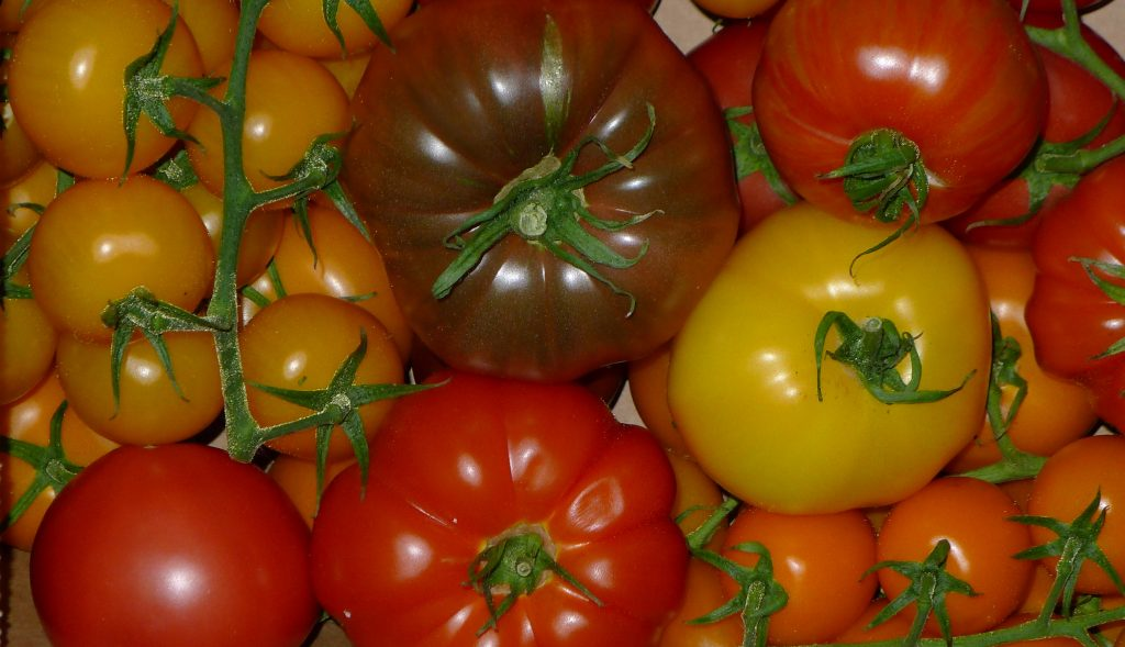 The tomato category is the world's largest vegetable category, representing 16%. It is also a very fast growing category with an increase in production of 49% between 2000 and 2013.