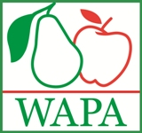 WAPA (World Apple and Pear Association) is pleased to welcome the Apple and Pear Section of the China Chamber of Commerce of Foodstuffs and Native Produce (CFNA) as a new member