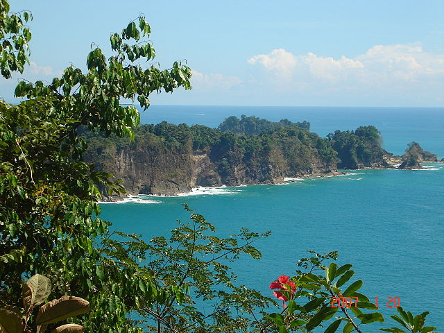 The banana sector in Costa Rica seeks a zero carbon footprint.