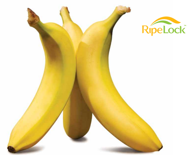 The RipeLock™ Quality System delivers consistently high quality bananas to help drive sales.