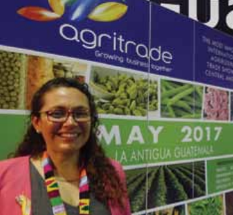 Fruit and vegetable exports from Guatemala are gaining ground in Europe, recording an annual growth of 10% over the past five years.