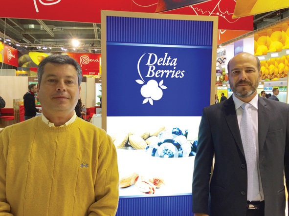 The blueberry grower Delta Berries is a packer and exporter located in the Concordia region, which supplies 50% of Argentina's total blueberry volume,.