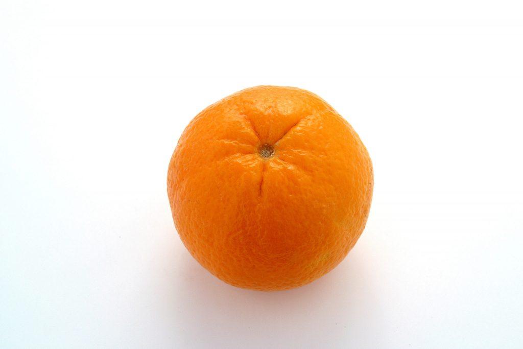 citrus ed flr