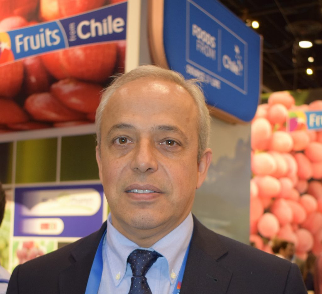 Chile is looking to expand its range of options and thus will continue to seek new alternatives in Asia. As for Europe, it will maintain its presence there but to what degree will depend on the openings that the new European season starting at the end of 2016 brings, as early reports anticipate a significant drop in production – of about 15% – in that market