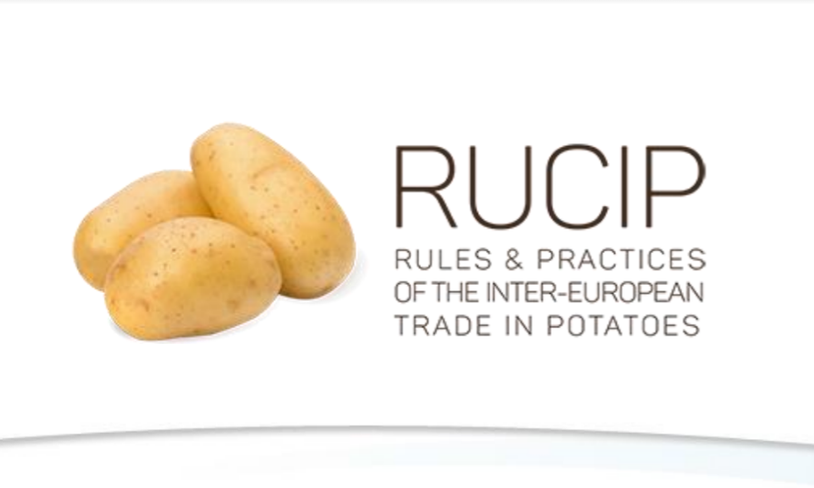 The modifications in Rucip 2017 focus strictly on the transfer of the European secretariat to Brussels and on the possibility of creating European lists of experts and arbitrators for countries without a National Rucip secretariat.