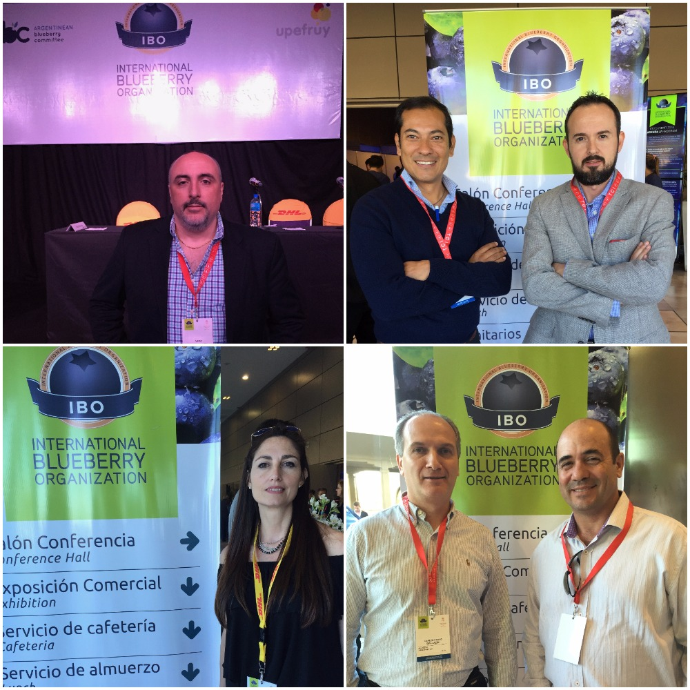 Some of the leading companies seen at the 6th edition of the the International Blueberry Organization (IBO) Summit, which took place in Concordia, Argentina, and in Salto, Uruguay, over September 20-22.