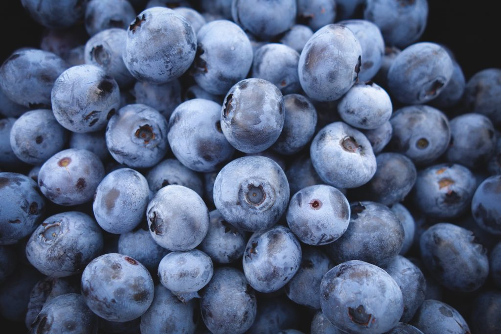 All about blueberries in Latin America