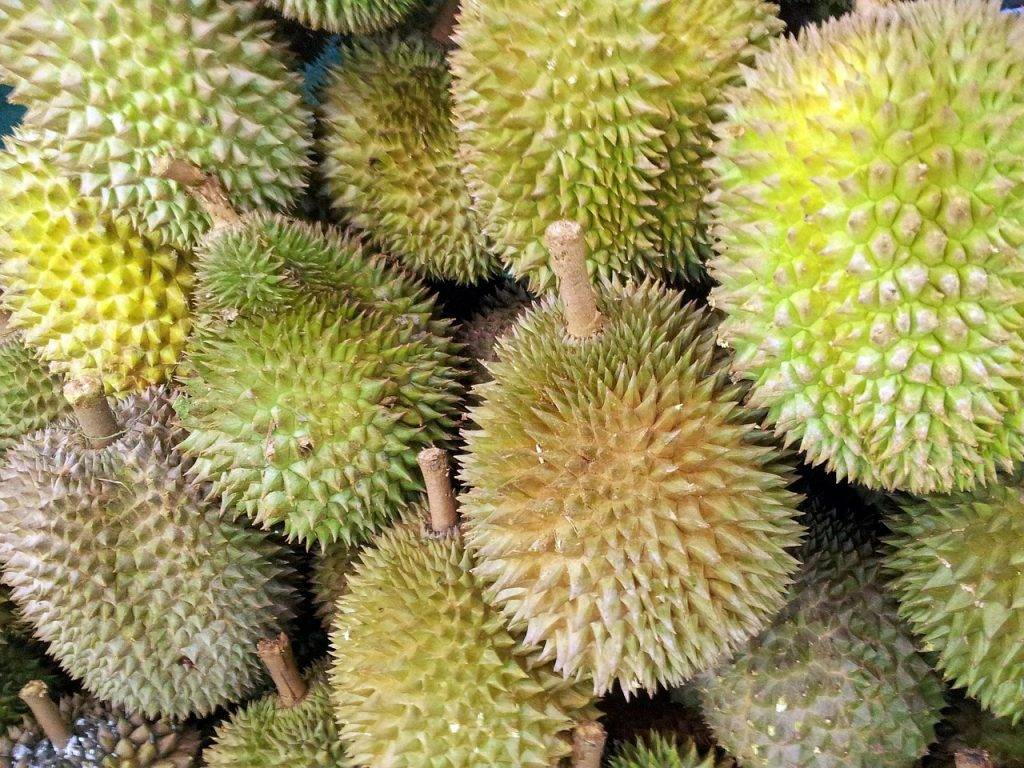 The most popular fruits exported to China from Thailand are durians, called the 'king of fruit'; mangosteens, the 'queen', and longans.
