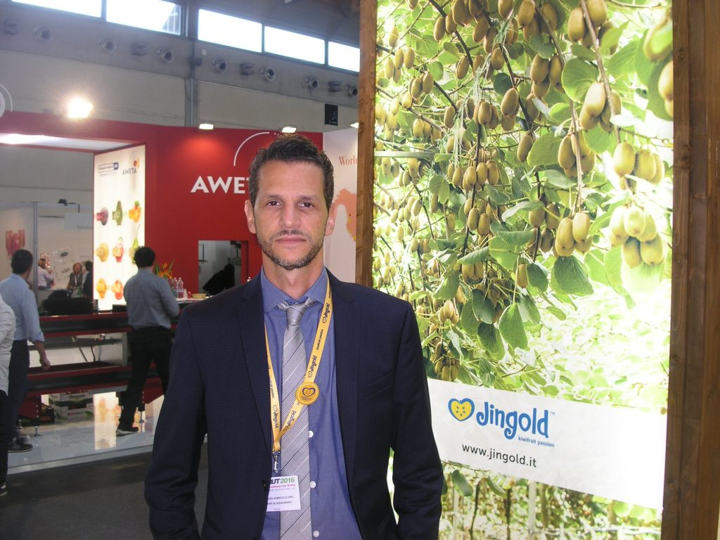 Jingold's 2016 campaign will be dominated by new varieties of kiwi.