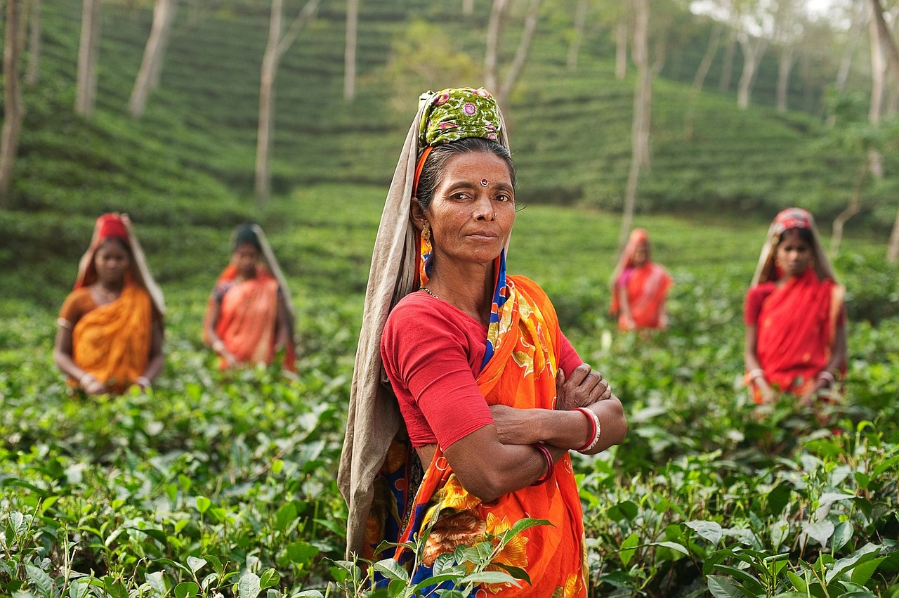 India offers promising export growth prospects for U.S. agriculture with a large and rapidly expanding middle class, rising disposable incomes and shifting consumption patterns toward higher-value agricultural commodities.