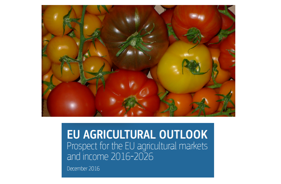 EU consumption of fresh tomatoes is set to remain stable or fall slightly. But the market for fresh tomatoes is characterised by strong segmentation into many different types and retail sales are increasing in value.