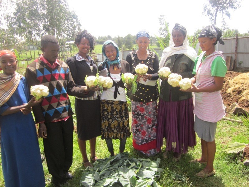 Hazera decided to support agricultural development in Africa, providing high quality seeds and expertise to support people improving their living conditions.