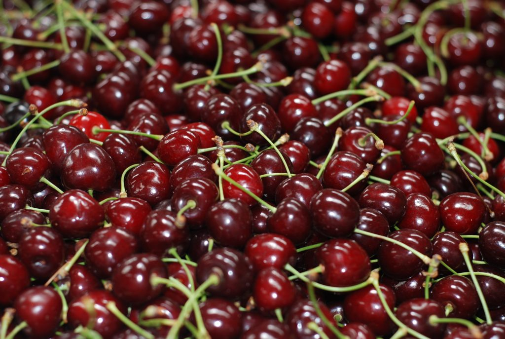 117 pais chile cherry