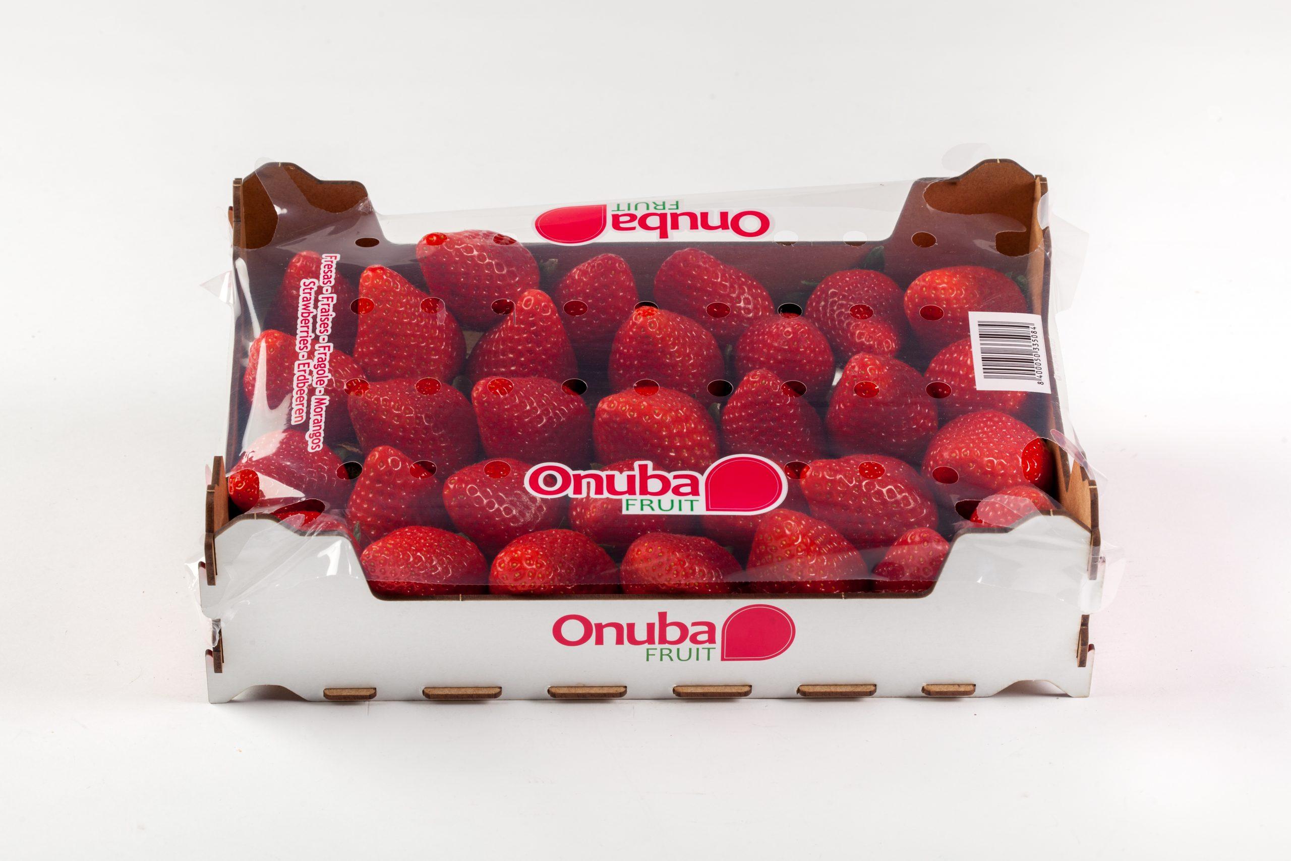 BERRIES spain ONUBA-fresas