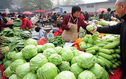chines export veg
