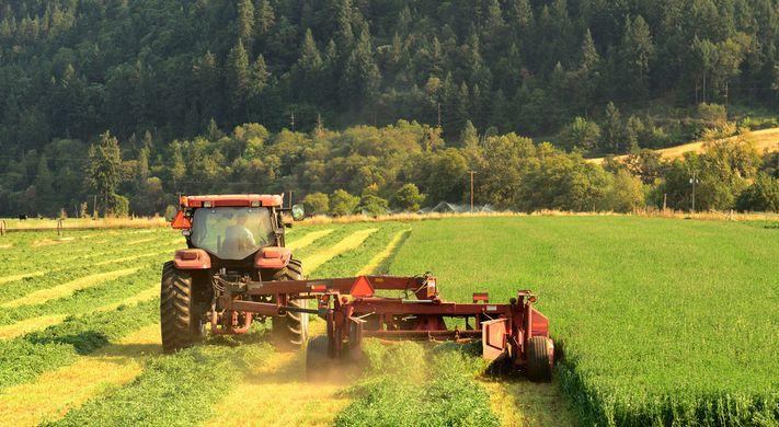 farmer farcing uk